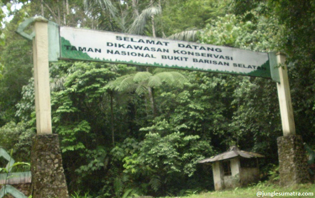 Image Result For Bukit Duabelas National Parka